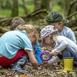 Join Nature Related Activities for Kids